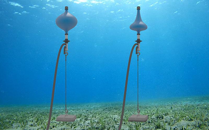 El nuevo diseño podría abrir el camino para que la energía de las olas sea asequible en el futuro. Imagen de Josh Bauer, NREL