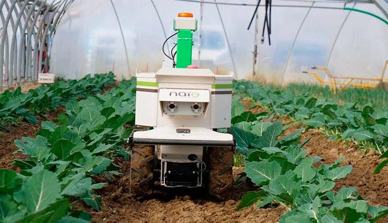 Oz, la más pequeña de las tres desmalezadoras eléctricas y autónomas de Naio Technologies.